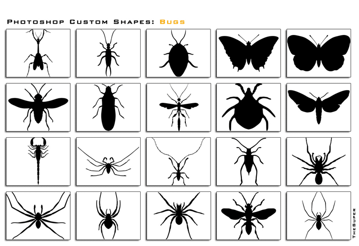 Photoshop Custom Shapes Bugs