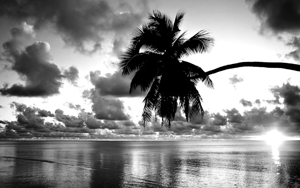 25 Best Monochromatic Black and White Photography |Monochromatic Photography Black And White