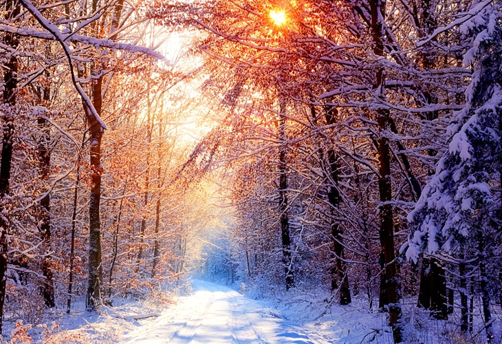 40 Beautiful Free Winter Wallpaper Designs For Inspiration Find and download rainy wallpaper on hipwallpaper. 40 beautiful free winter wallpaper