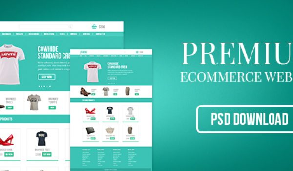 Premium Ecommerce Website PSD - cssauthor.com