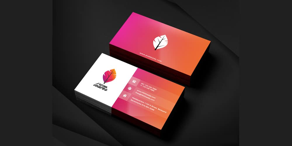 Professional Business Card PSD