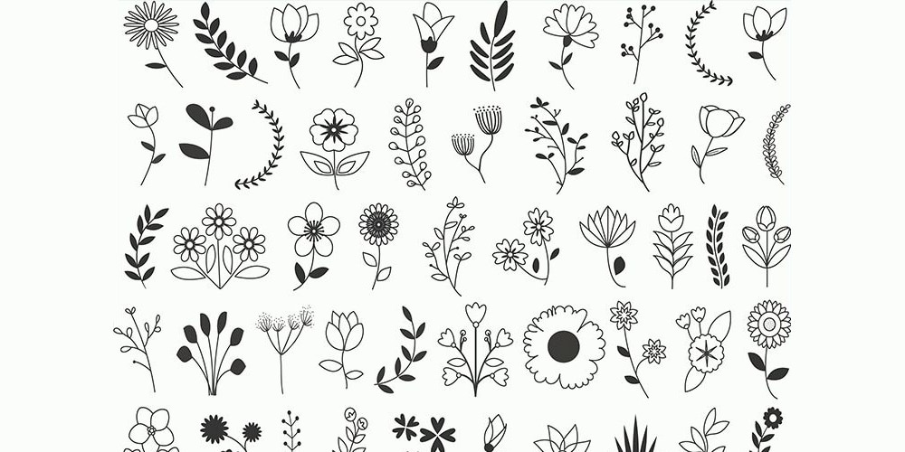 Free Vector Floral Elements