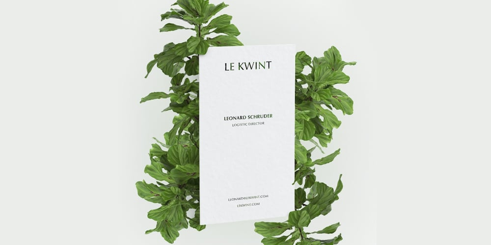 Business Card Mockup in with Ficus