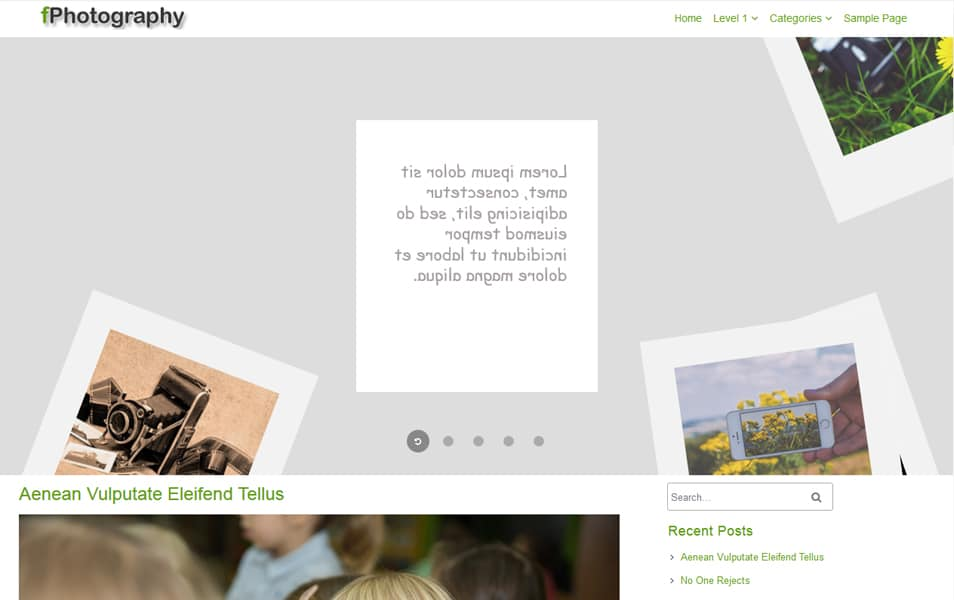 fPhotography Responsive WordPress Theme