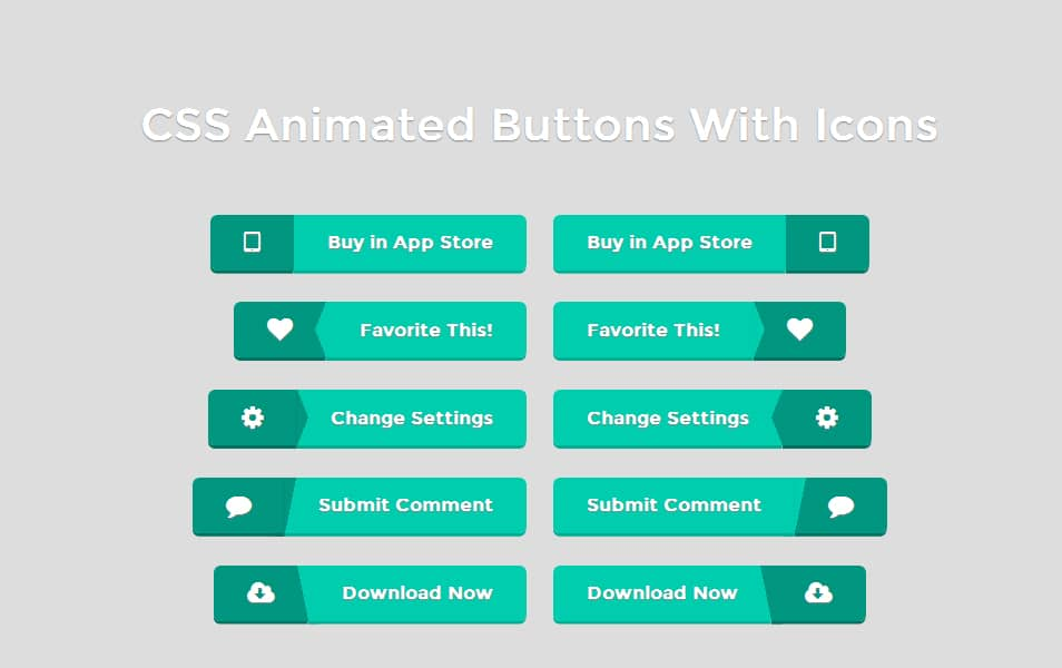 CSS Animated Buttons With Icons