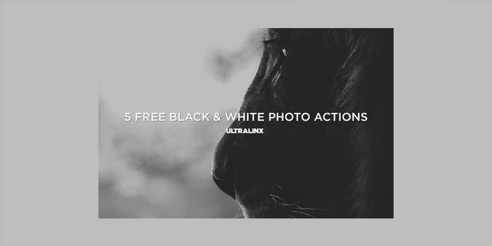 Free Black and White Photo Actions