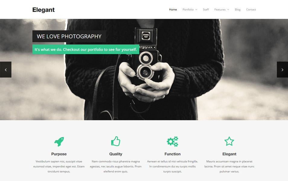 Elegant Free WordPress Theme