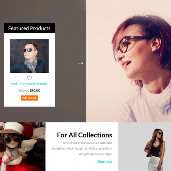 Free Responsive HTML5 CSS3 E commerce Website Templates