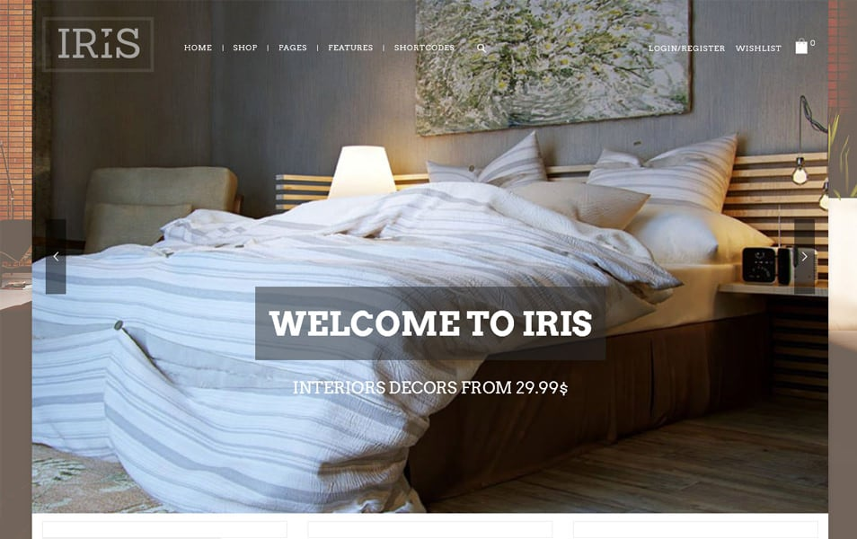 Iris Responsive WordPress Theme