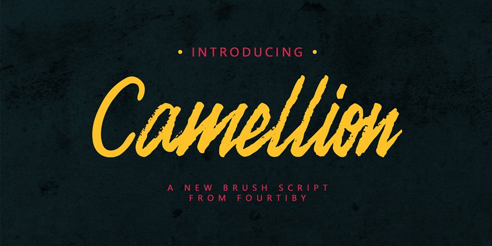 Camellion Brush Script Typeface