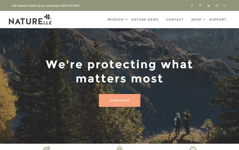 Naturelle Responsive WordPress Theme