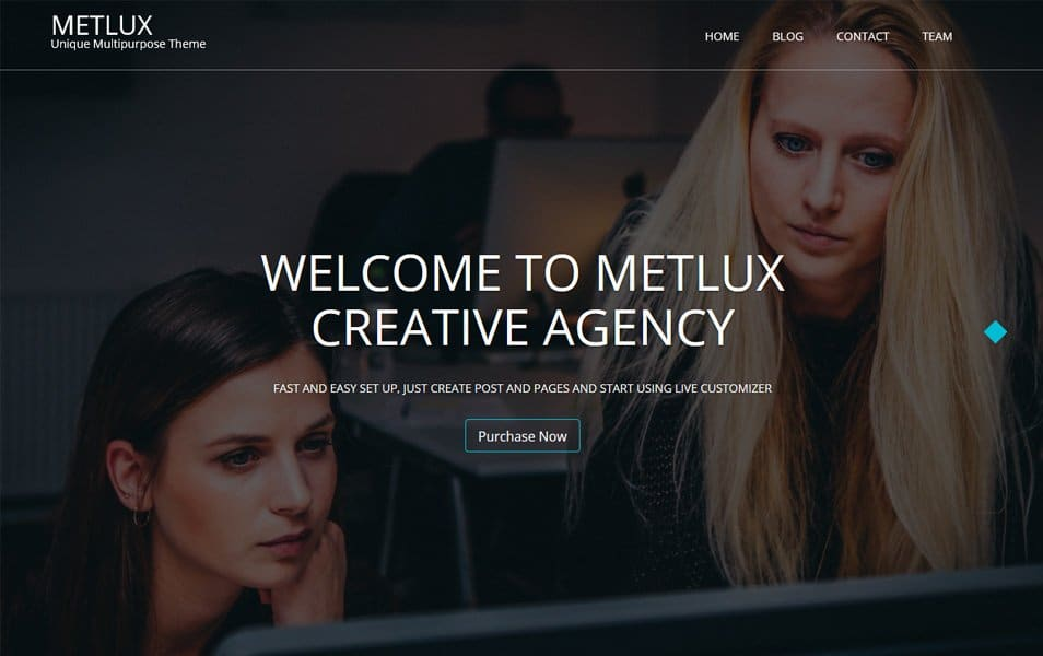 Metlux Responsive WordPress Theme