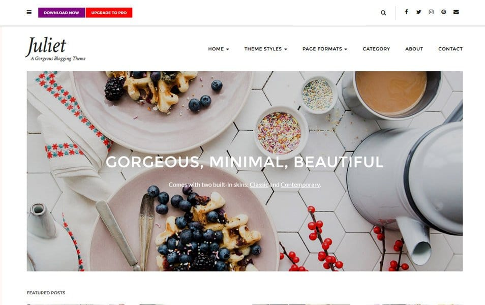 Juliet Responsive WordPress Theme