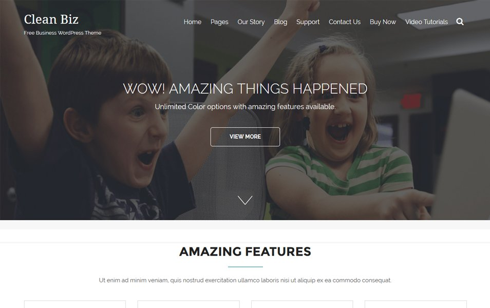 Clean Biz Responsive WordPress Theme