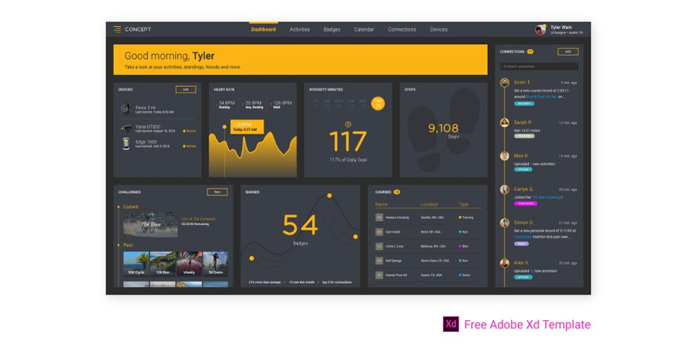 Free Fitness Dashboard
