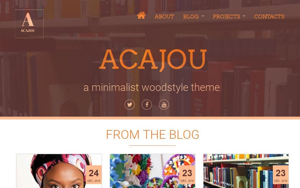 Acajou Responsive WordPress Theme