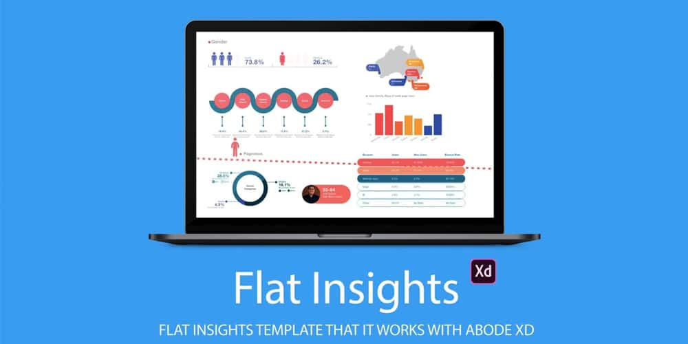 Flat Insights Infographics Template