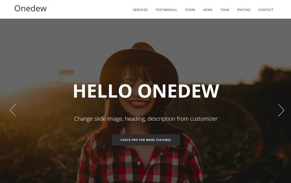 Onedew Responsive WordPress Theme