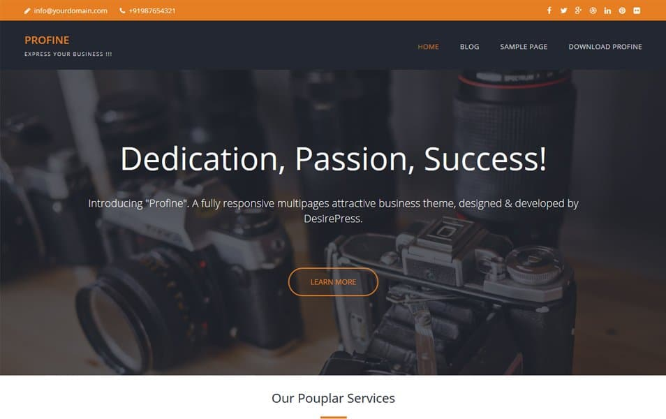 Profine Responsive WordPress Theme