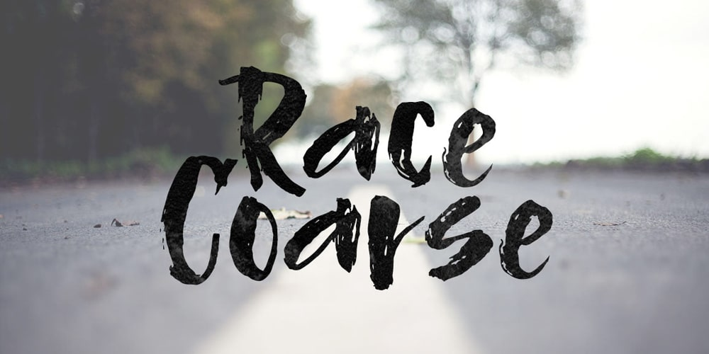 Race Coarse Ink Brush Font