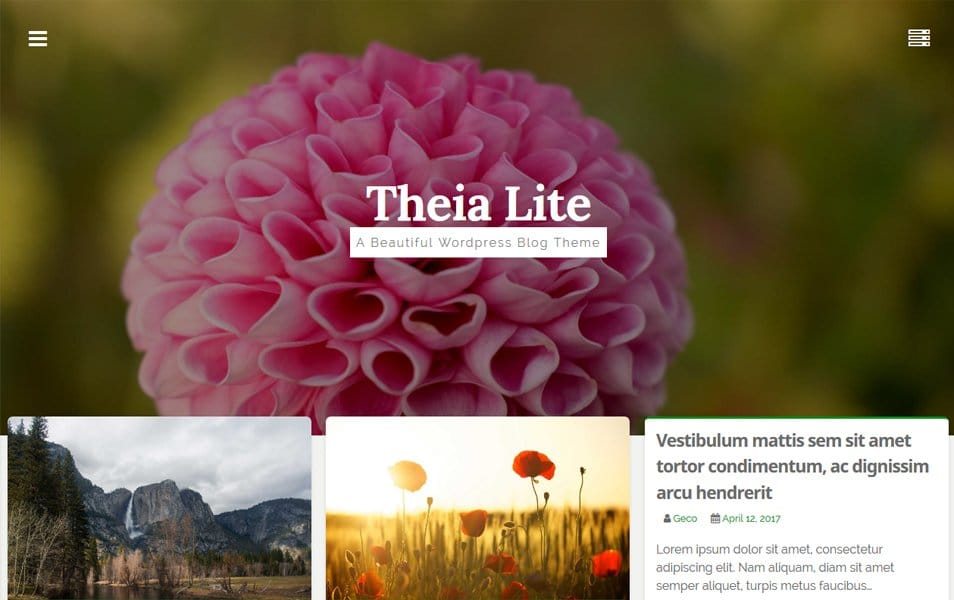 Theia Lite Responsive WordPress Theme