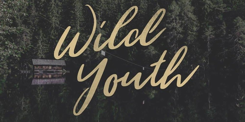Wild-Youth-Brush-Script-Fonts