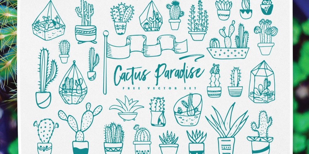 Cactus-Paradise-Vector-Patterns