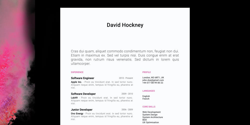 David-Hockney-Resume-CV-Template