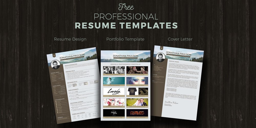 Free Professional Resume Templates  Design Resume Templates