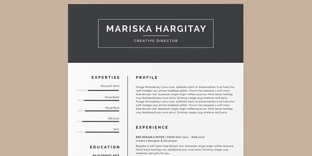 High End Resume CV