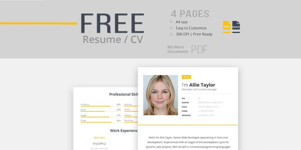 Resume CV Template for Modern Look