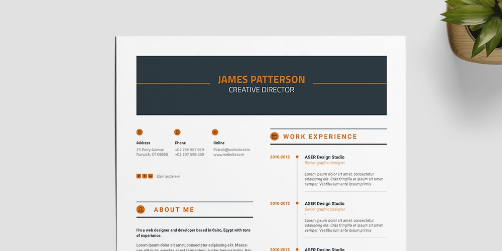 Simple and Professional Resume Template