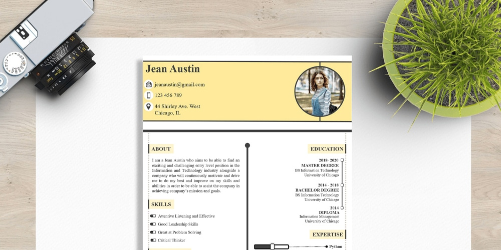 freshers resume CV design template