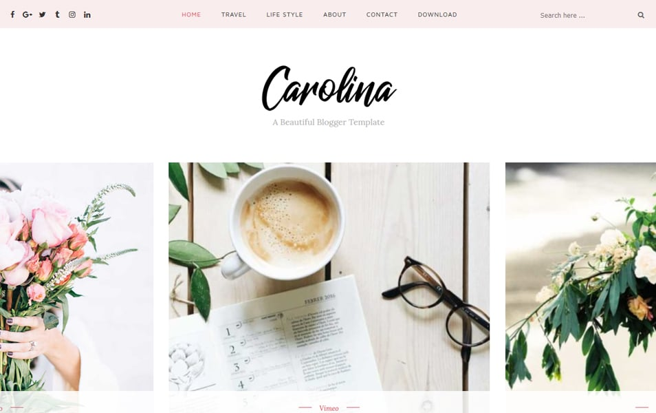 Carolina Personal Blogger Template