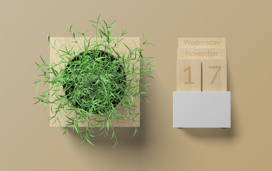 Plant and Calendar Free Mockup PSD