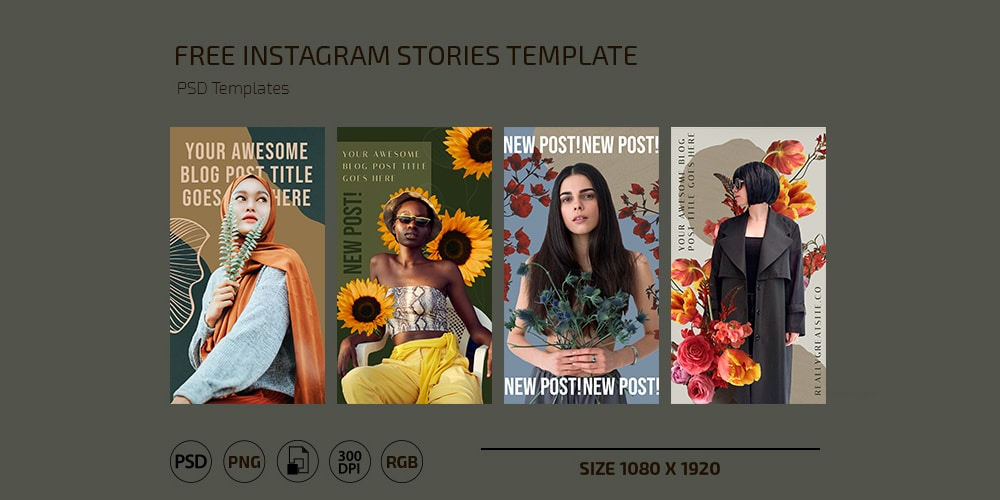 Collage Instagram Stories Template