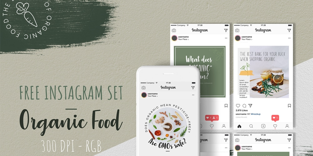 Organic Food Instagram Templates