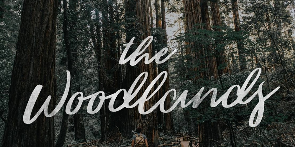 The Woodlands - Free Brush Script Font