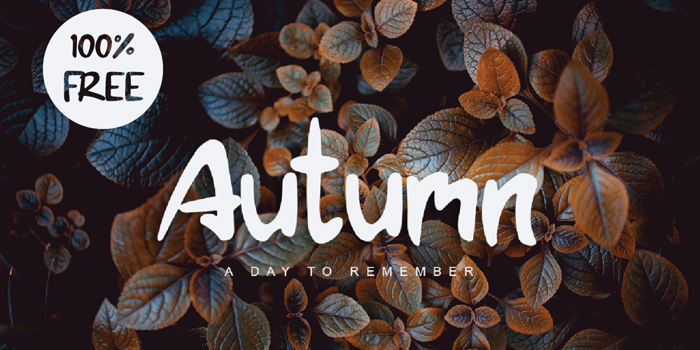 Autumn Display Font