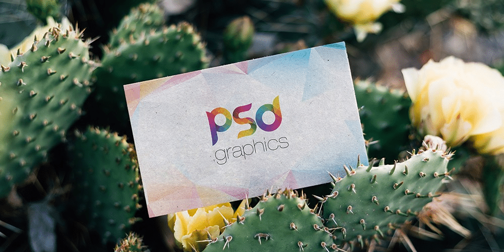 Outdoor Business Card Mockup Template