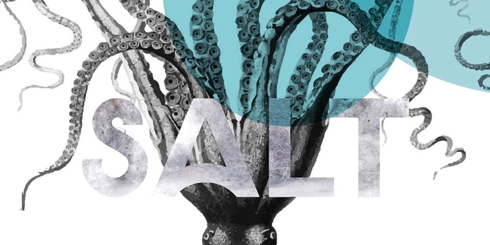 Salt Display Typeface