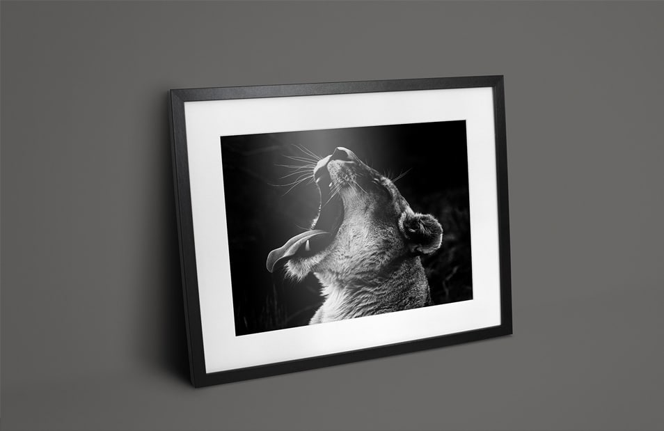 Free Black Photo Frame Mockups