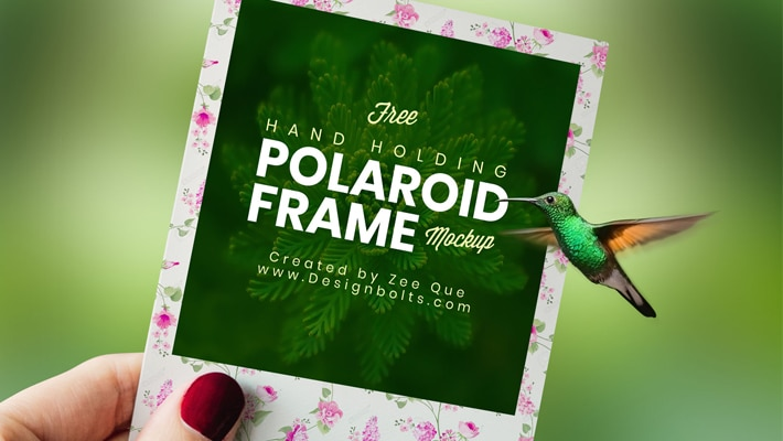 Free Polaroid Photo Frame Mockup PSD