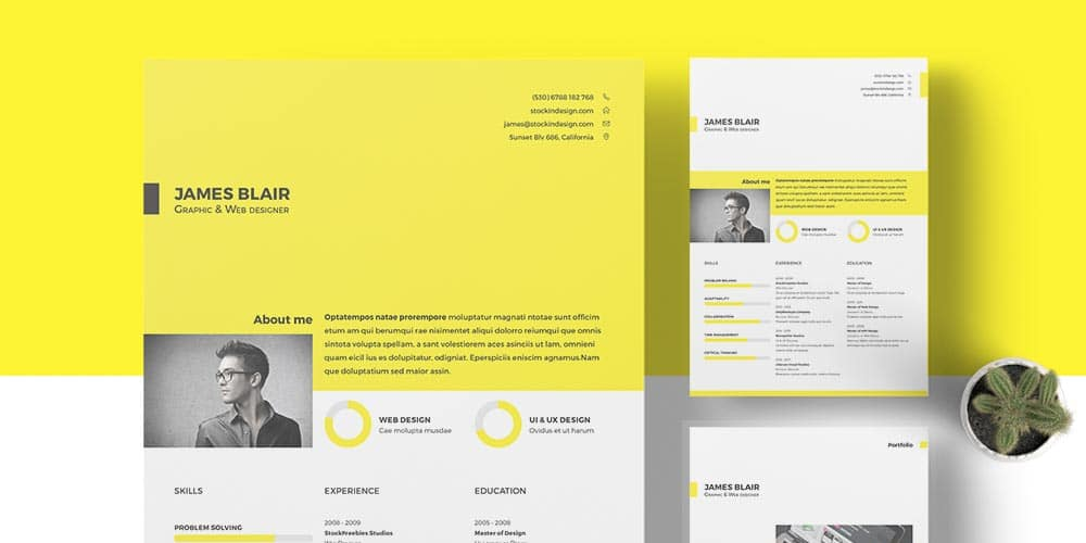 Free-InDesign-Resume-Template