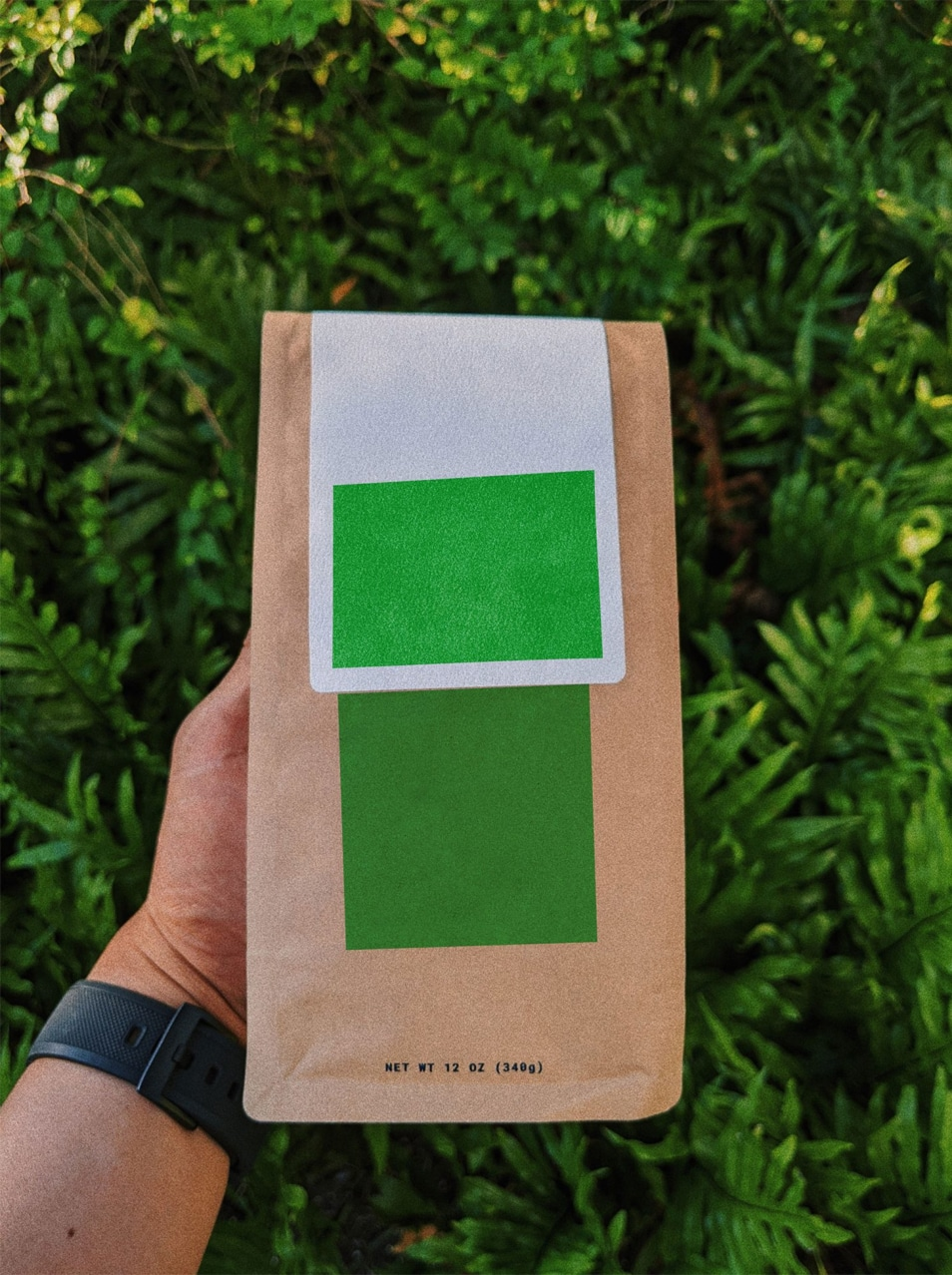 Specialty Coffee Bag Mockup